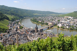 Mosel Wine Experience